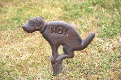 2021 01 12 crotte de chien Montpoupon1