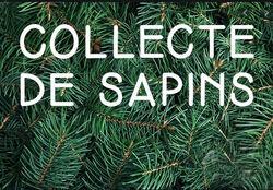 Sapins de Noël Ramassage 2021 01 19